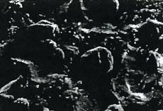 球場黒鉛鋳鉄(FCD)